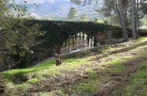 """Ruta """"El Corazón de La Sierra"""" Sierra de Gata"""