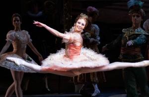 Entrada para Nina Kaptsova. Estrellas del Ballet Ruso.