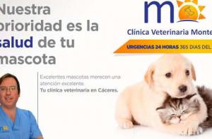 Campaña Higiene y Salud dental para tu mascota